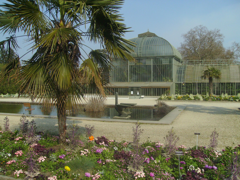 File Jardin Botanique Geneve Panoramio 8 Jpg Wikimedia Commons