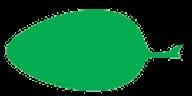 Feuille ovale
