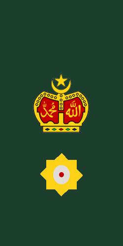Filelieutenant Colonel Of Malaysian Armyg Wikimedia Commons