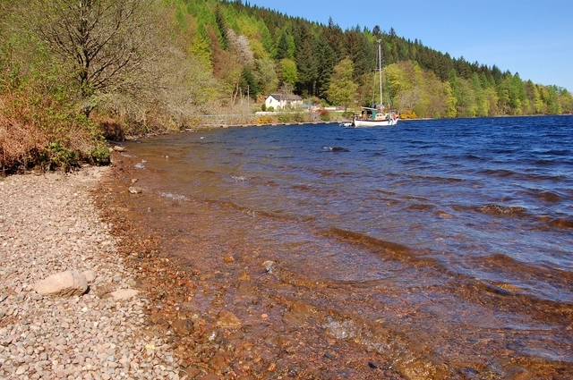 Loch Oich shoreline - geograph.org.uk - 418220