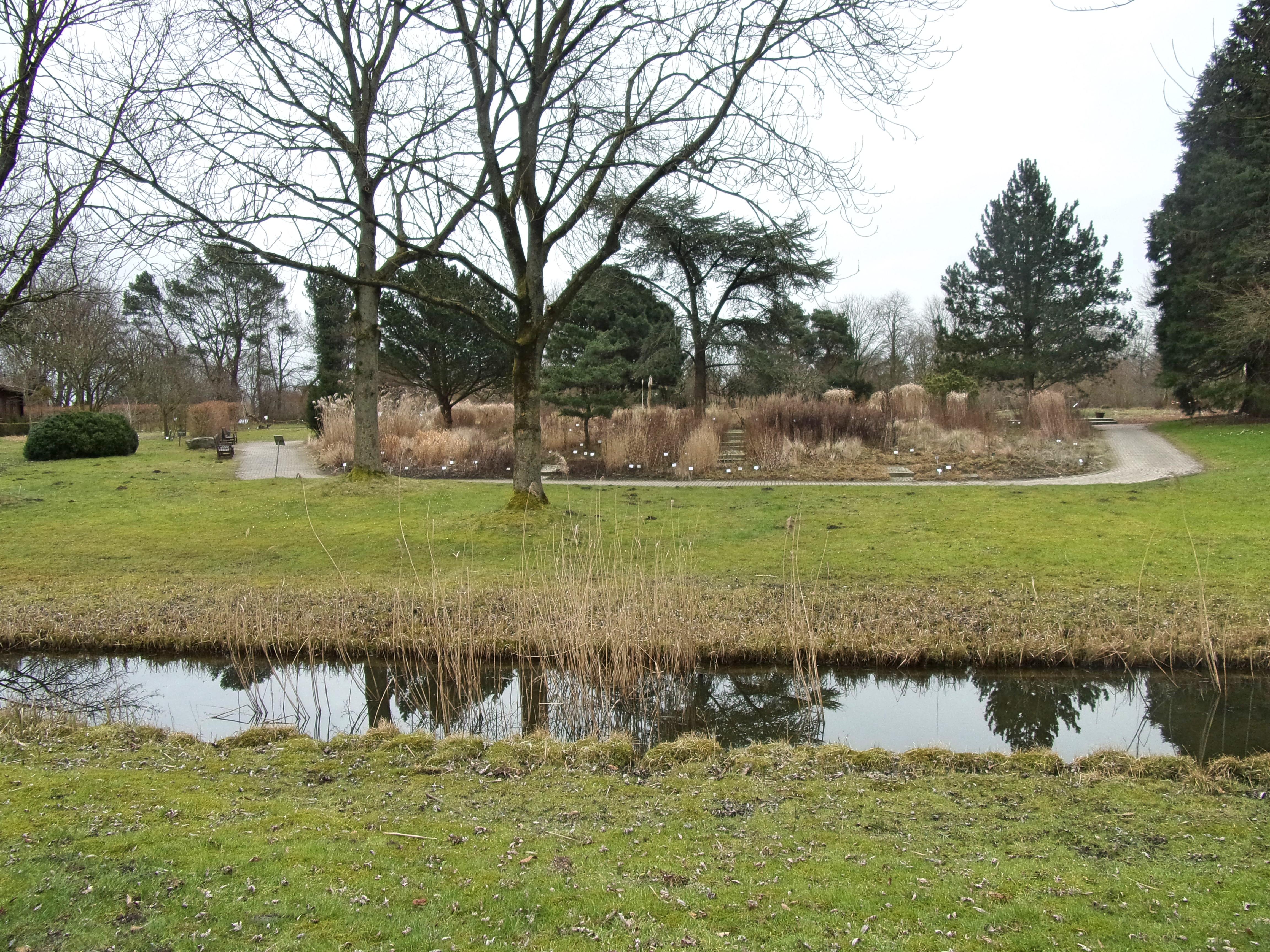 Fileloki Schmidt Garten Hh 1jpg Wikimedia Commons