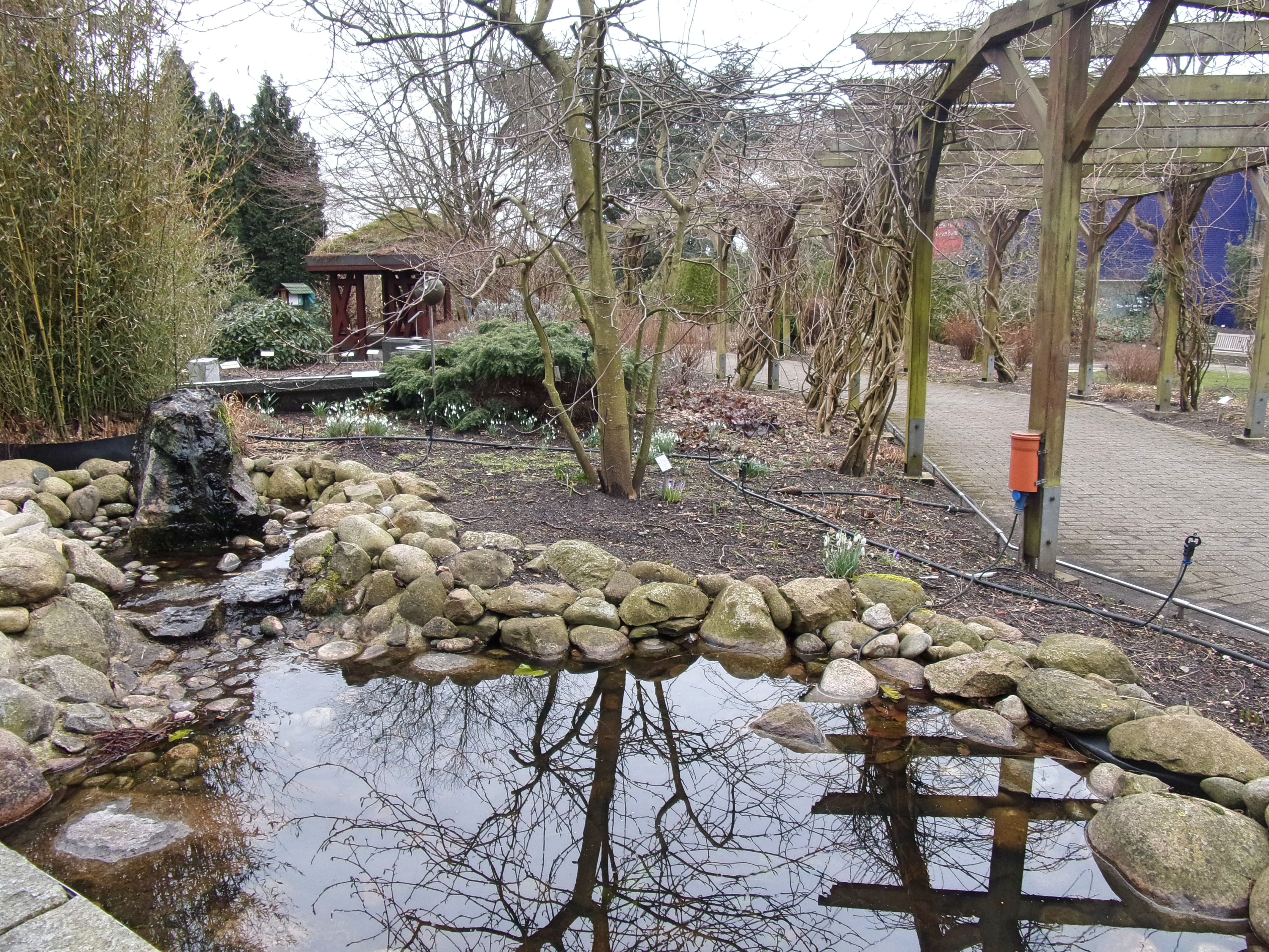 Fileloki Schmidt Garten Hh 2jpg Wikimedia Commons