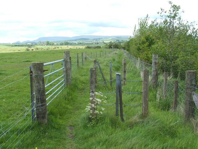 Looking north along the Kelvin Walkway - geograph.org.uk - 947268