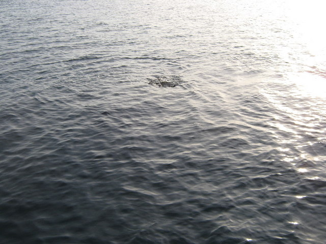 Offshore rock - geograph.org.uk - 1244159