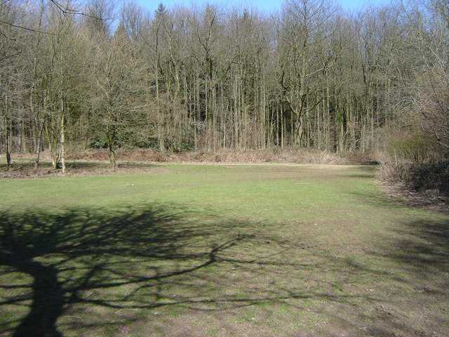 Picnic Area at Chawton Park Woods - geograph.org.uk - 148394