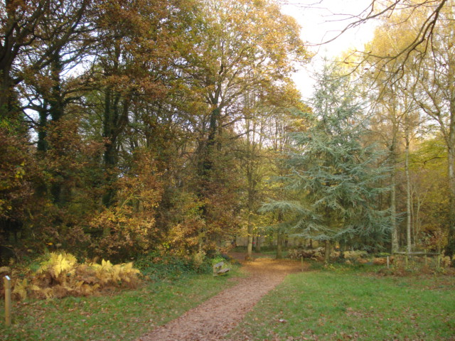 Queenswood Country Park - geograph.org.uk - 621543