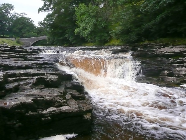 Stainforth Force, upper fall - geograph.org.uk - 1452114