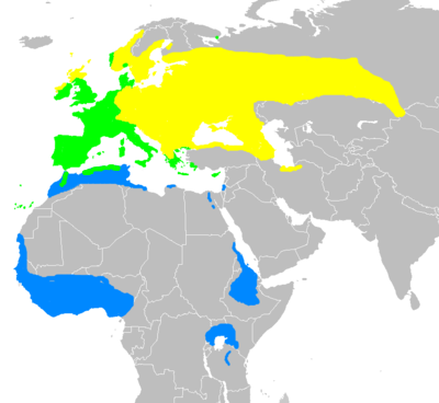 Sylvia atricapilla distribution map