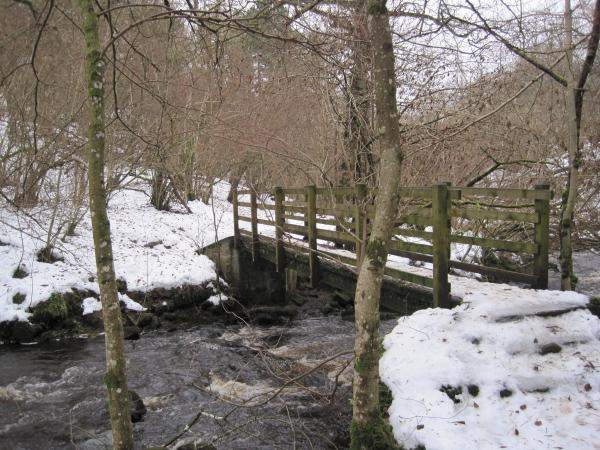 The First Footbridge, Hareshaw Linn Gorge - geograph.org.uk - 1692175