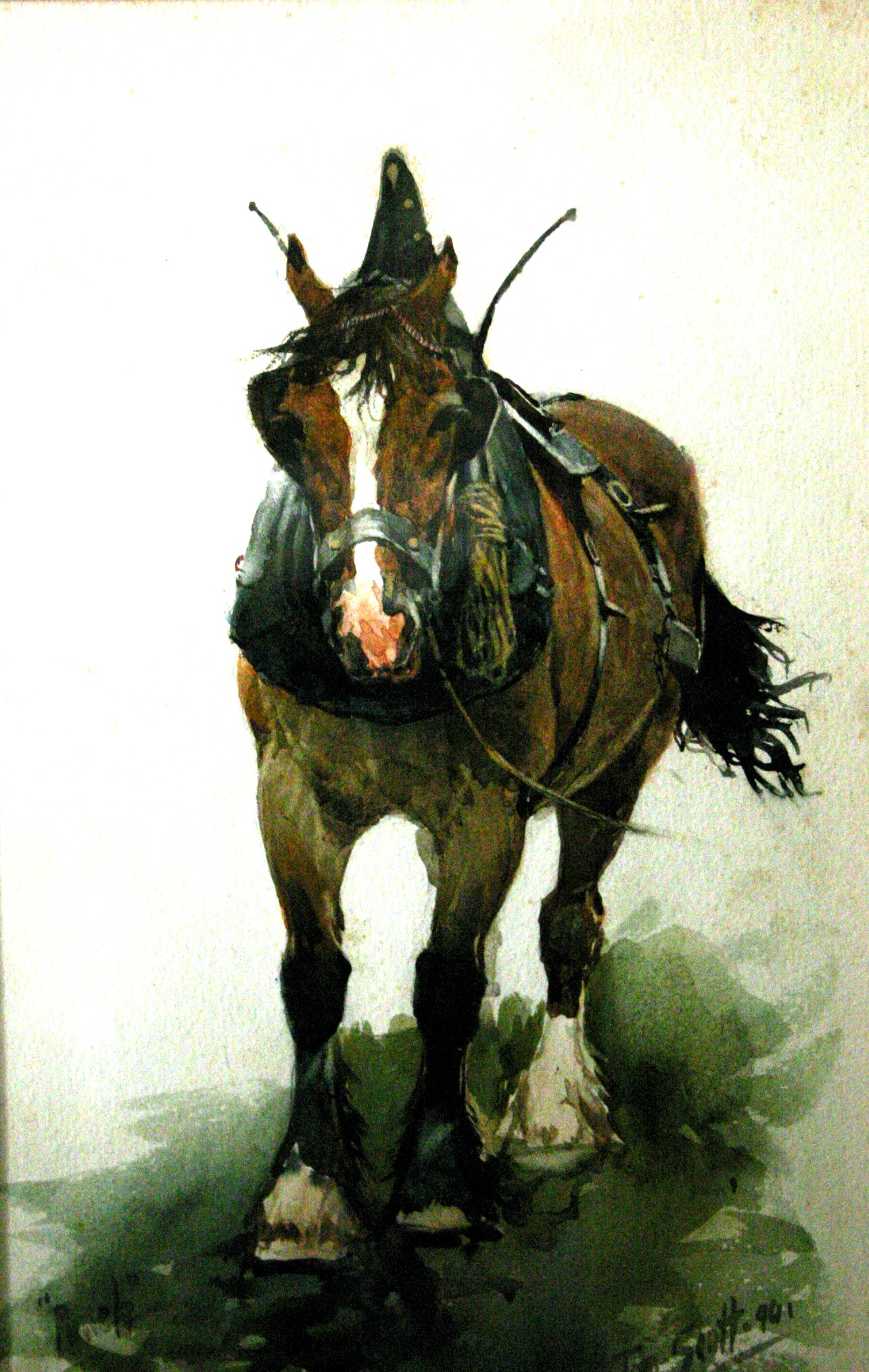 Caballo de Tom Scott