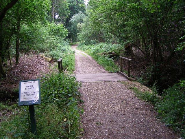 Weak bridge in the Pondhead Inclosure, New Forest - geograph.org.uk - 191567
