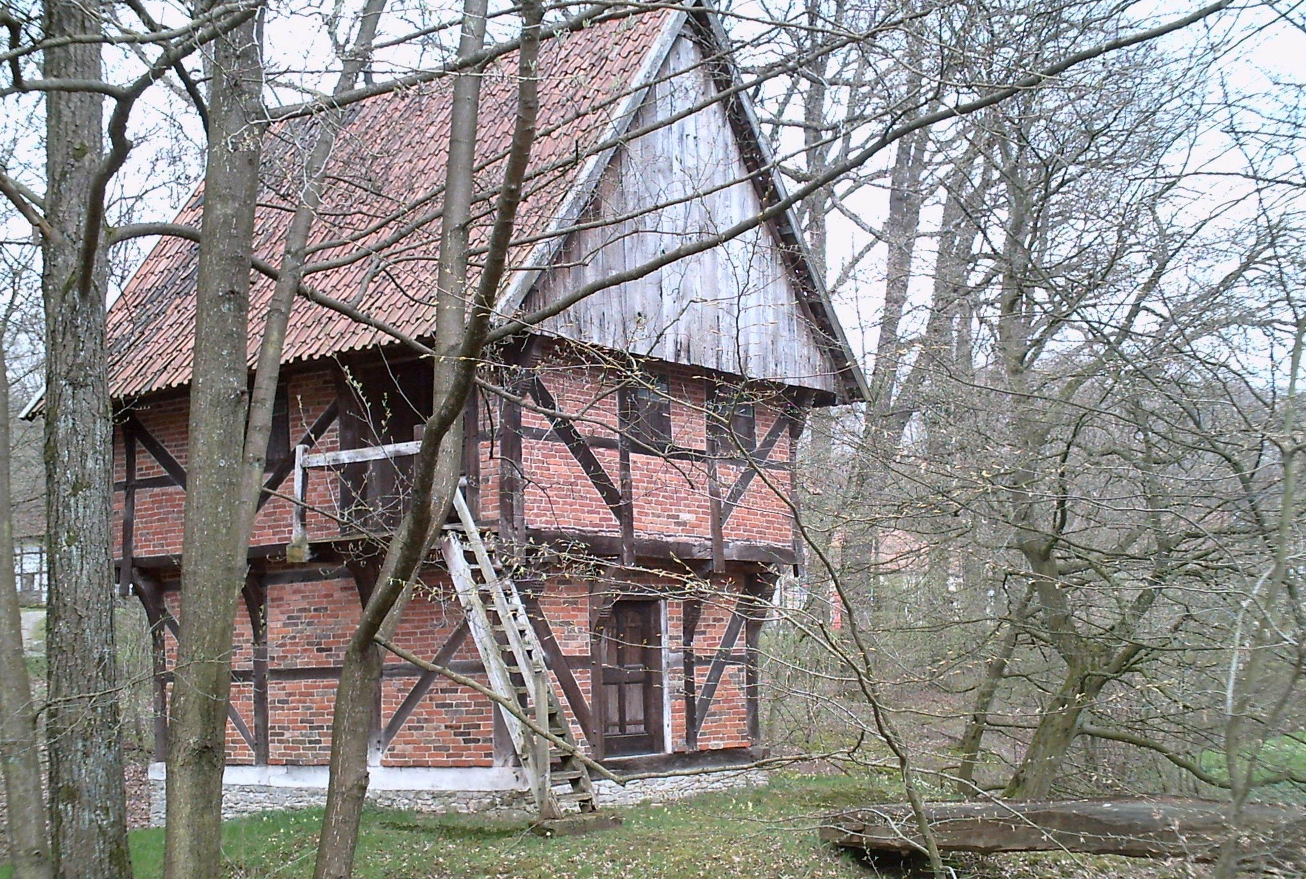 Single mecklenburg vorpommern picture 27
