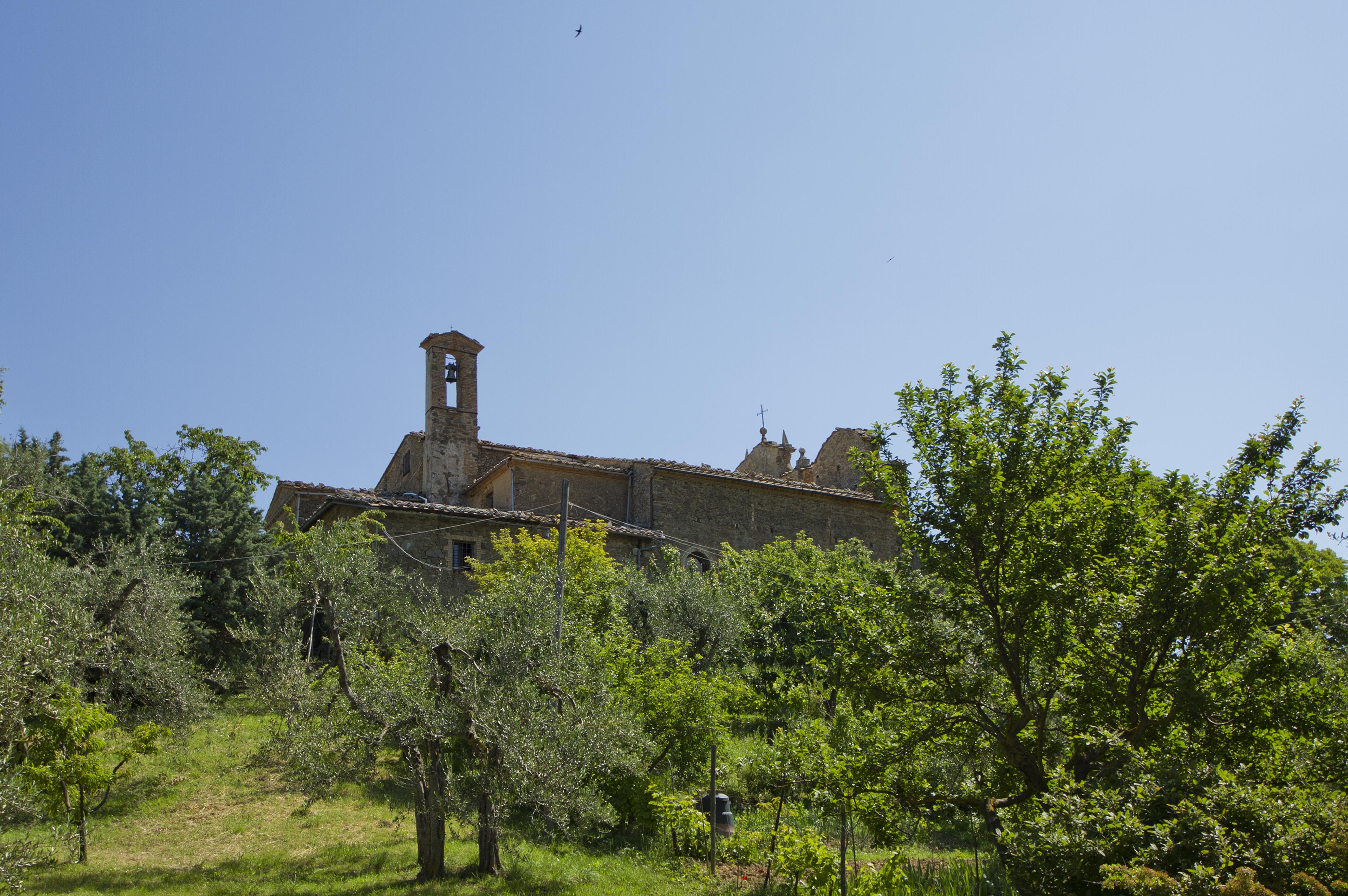 53024 Montalcino SI, Italy - panoramio (10).jpg