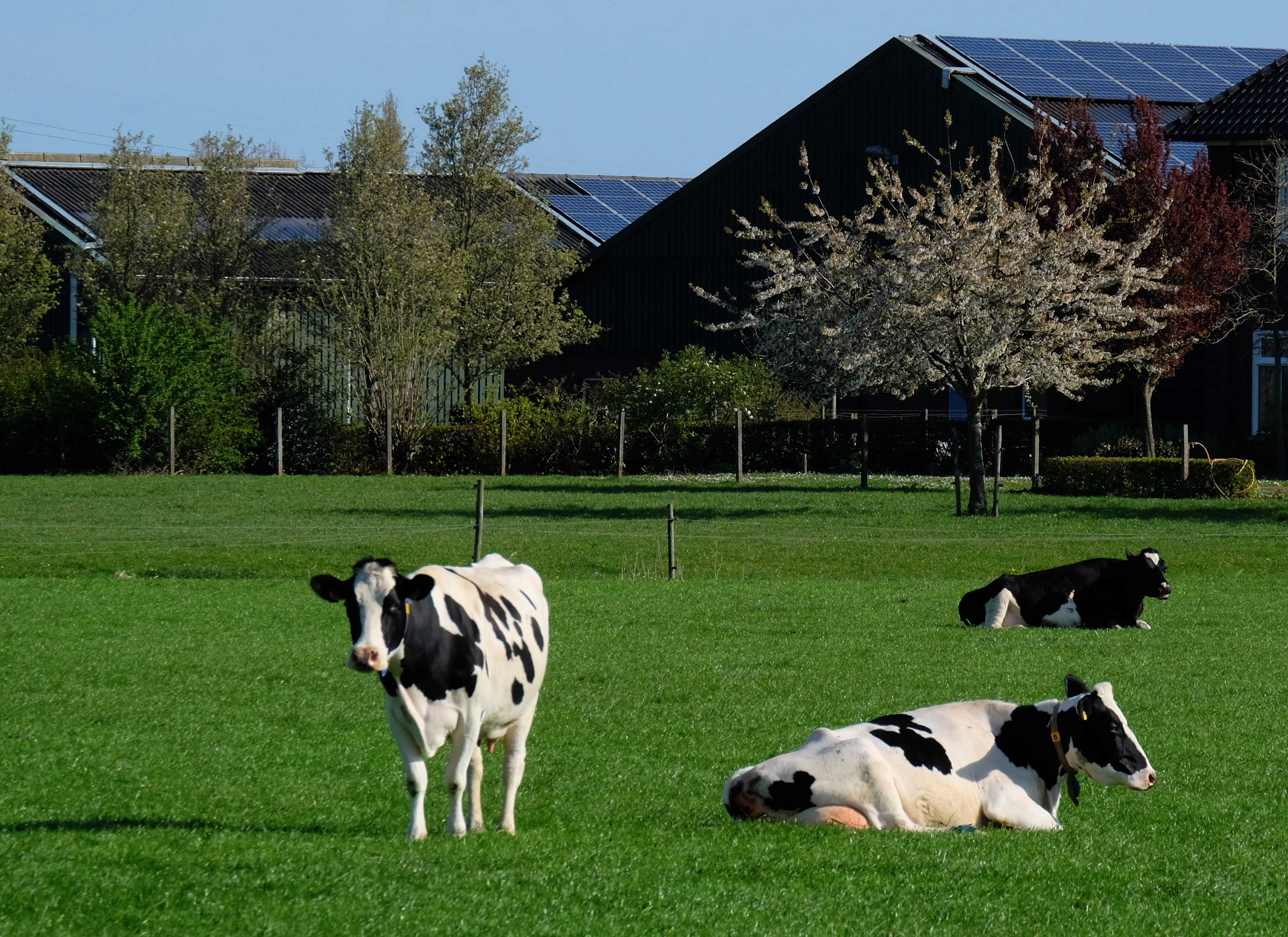 US and EU Partner for Global Methane Reduction