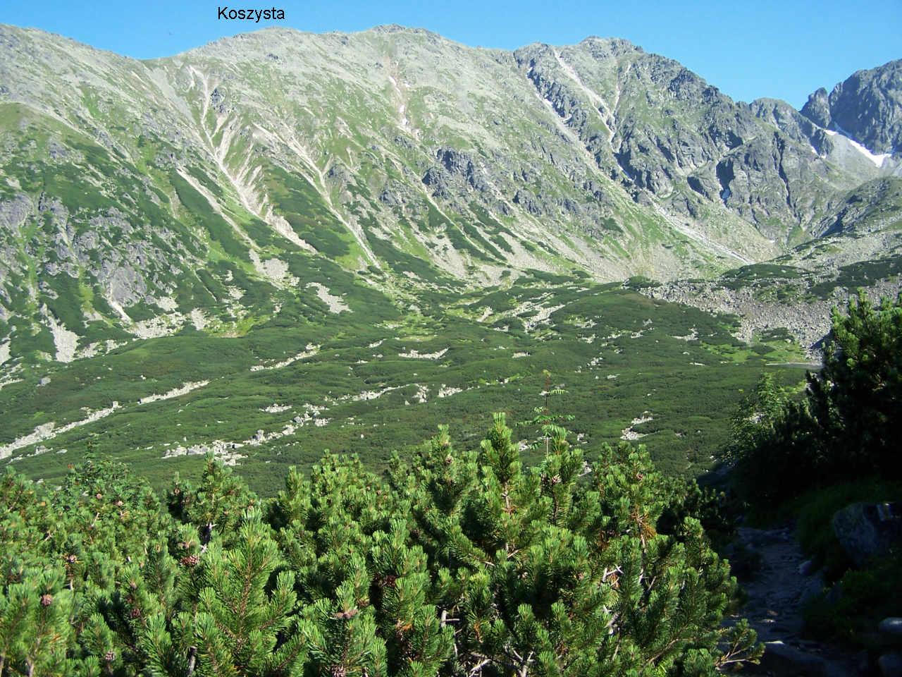 Dolina Pańszczyca (źródło: Wikimedia, foto J.Opioła, licencja GNU)