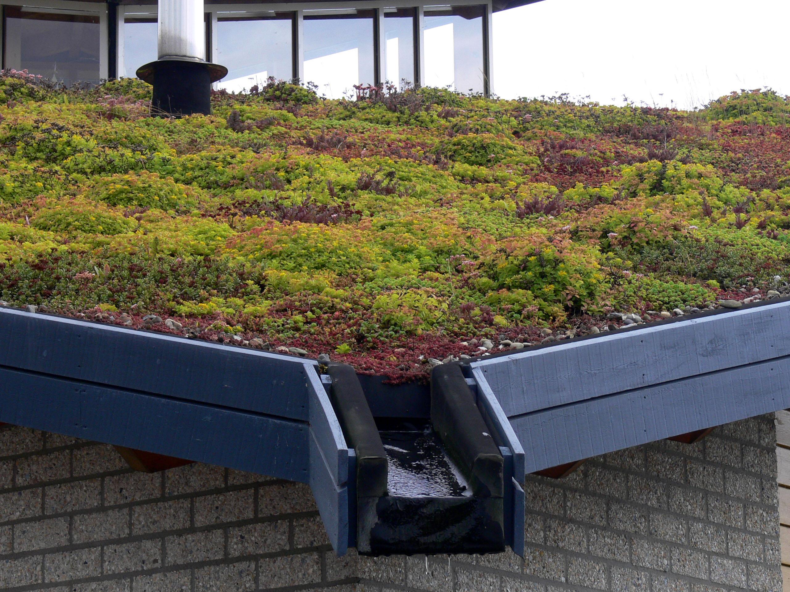 file eva lanxmeer green roof2 wikimedia commons. Black Bedroom Furniture Sets. Home Design Ideas