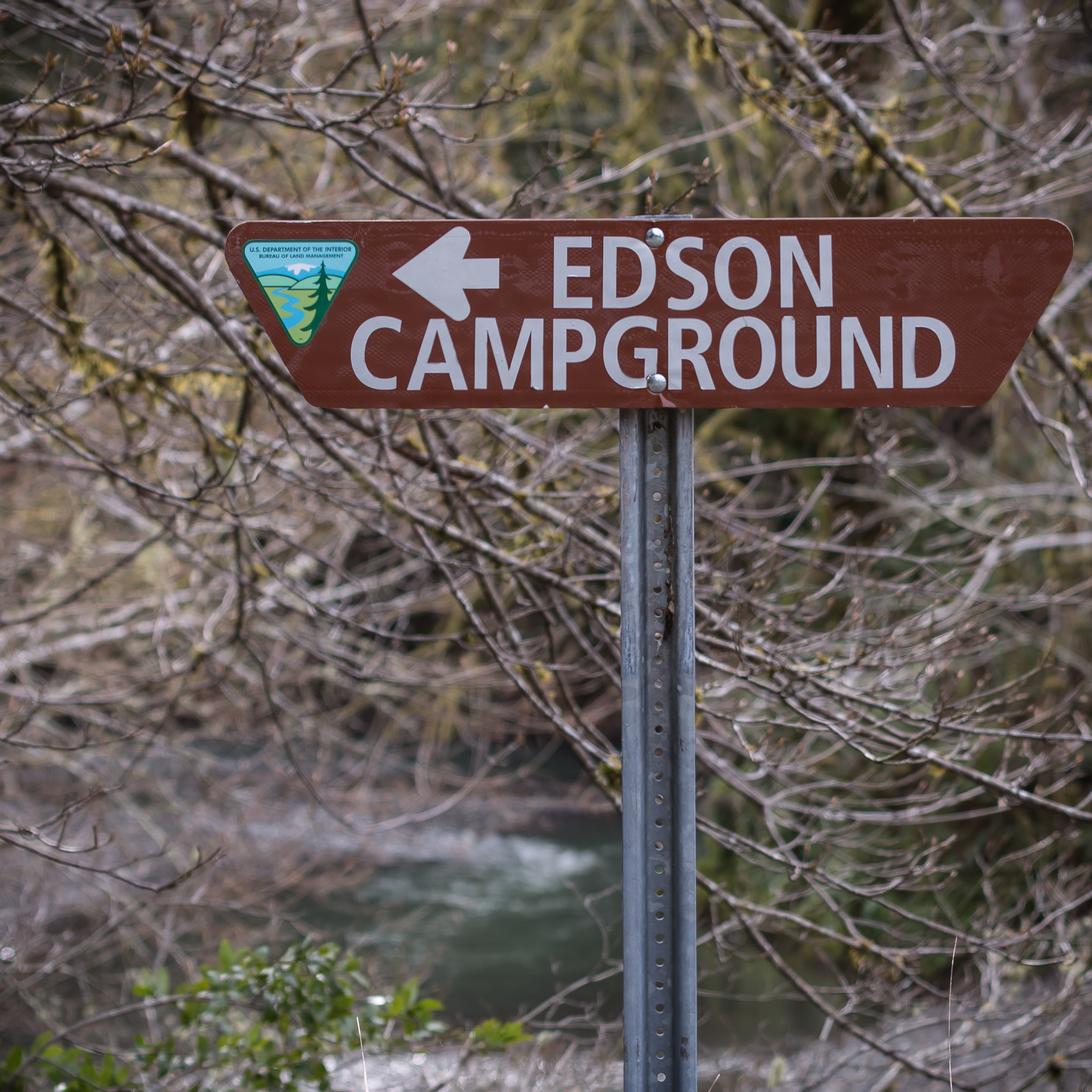 Recreation Site. The rivers, streams, and forests that surround Edson Creek Recreation Site are home to many different fish and wildlife. Bear, cougar, and