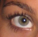 File:Eyebrow5.jpg