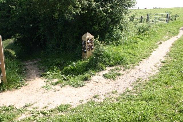 Footpaths Crossing - geograph.org.uk - 462854