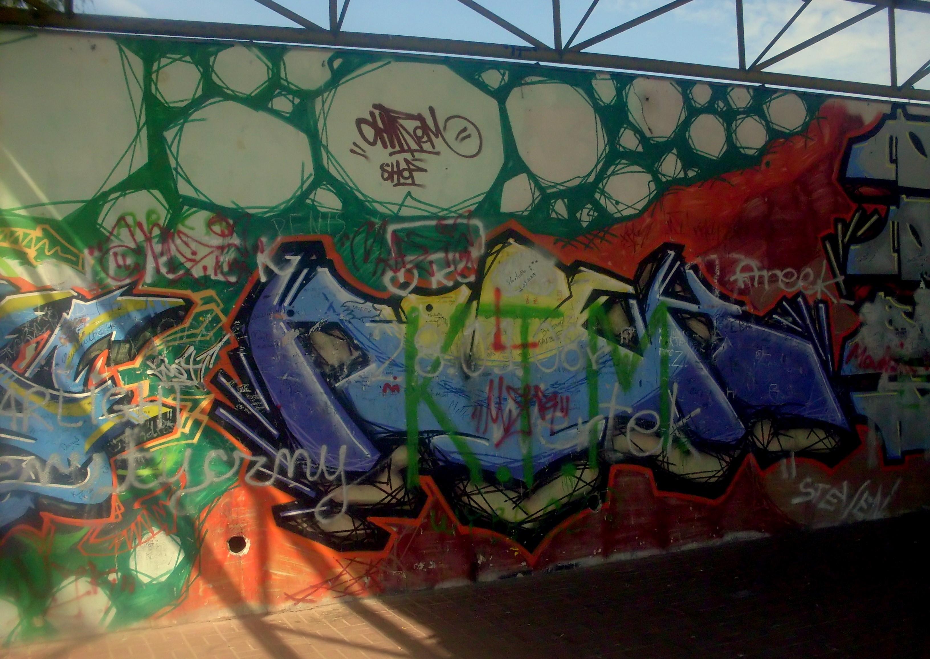 Filegraffiti at city park in gdynia obluze 3 jpg