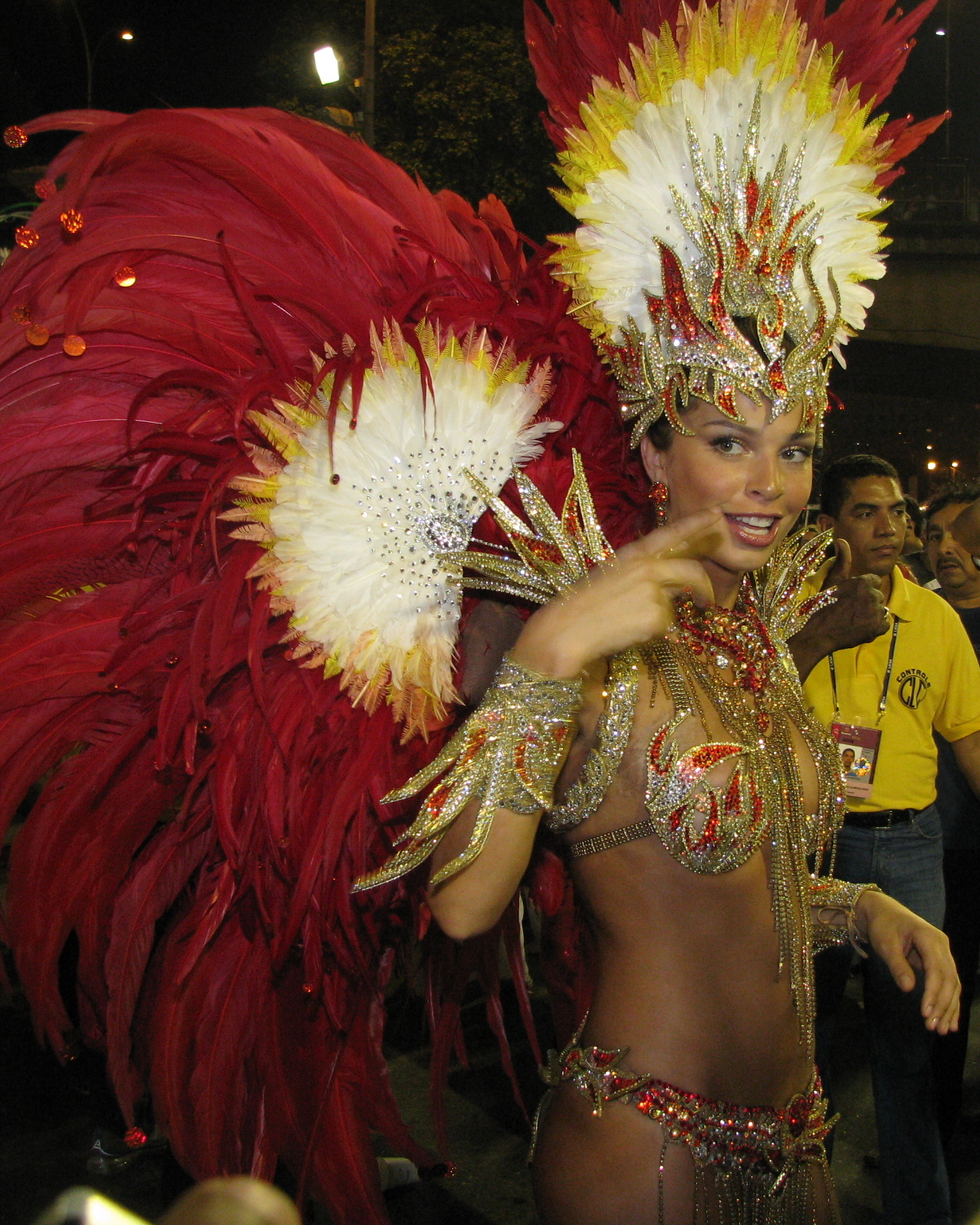 Brasileño Carnaval Historia, Propósito - Ubicación - Río de Janeiro, Brasil