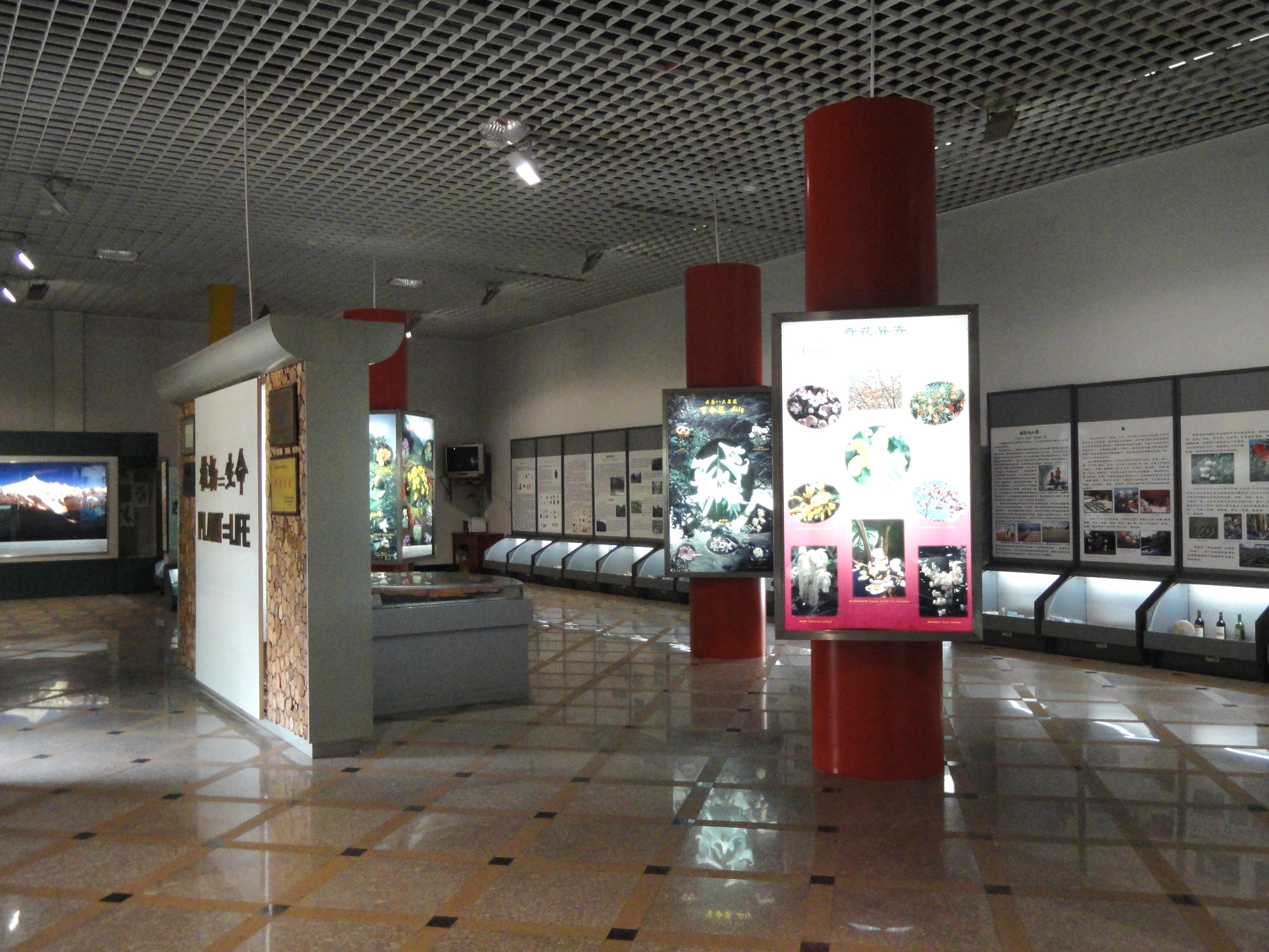 File Interior Exhibition Hall Kunming Botanical Garden