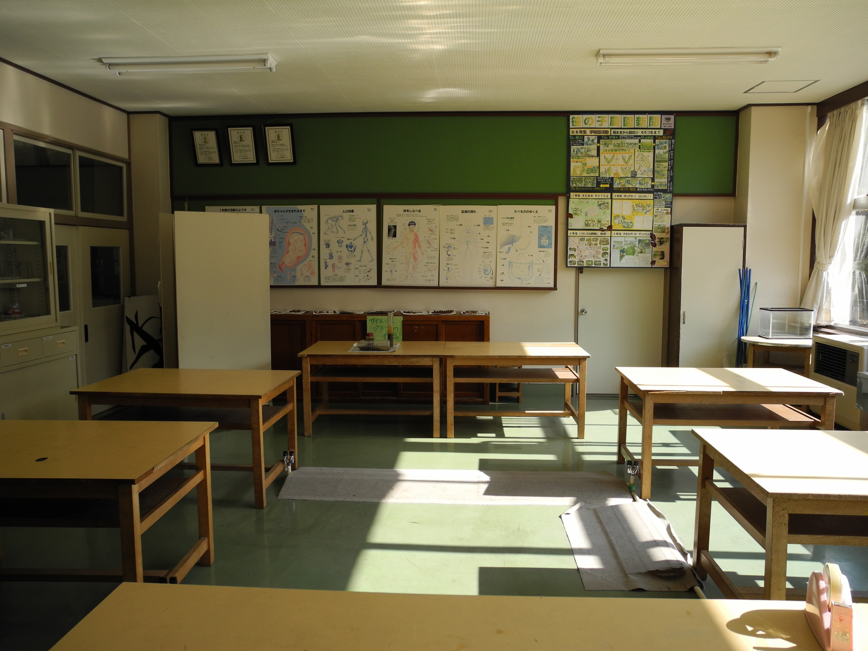 Classroom Design Description ~ File jinego elementary school science room back g