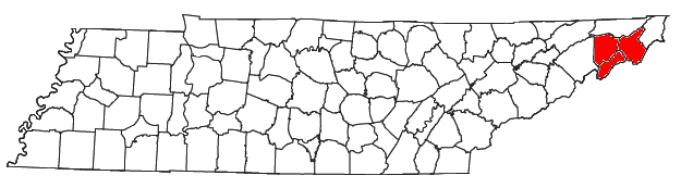 Johnson City metropolitan area