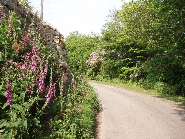 Lane at Ninnesbridge, St Michael's Way - geograph.org.uk - 182943