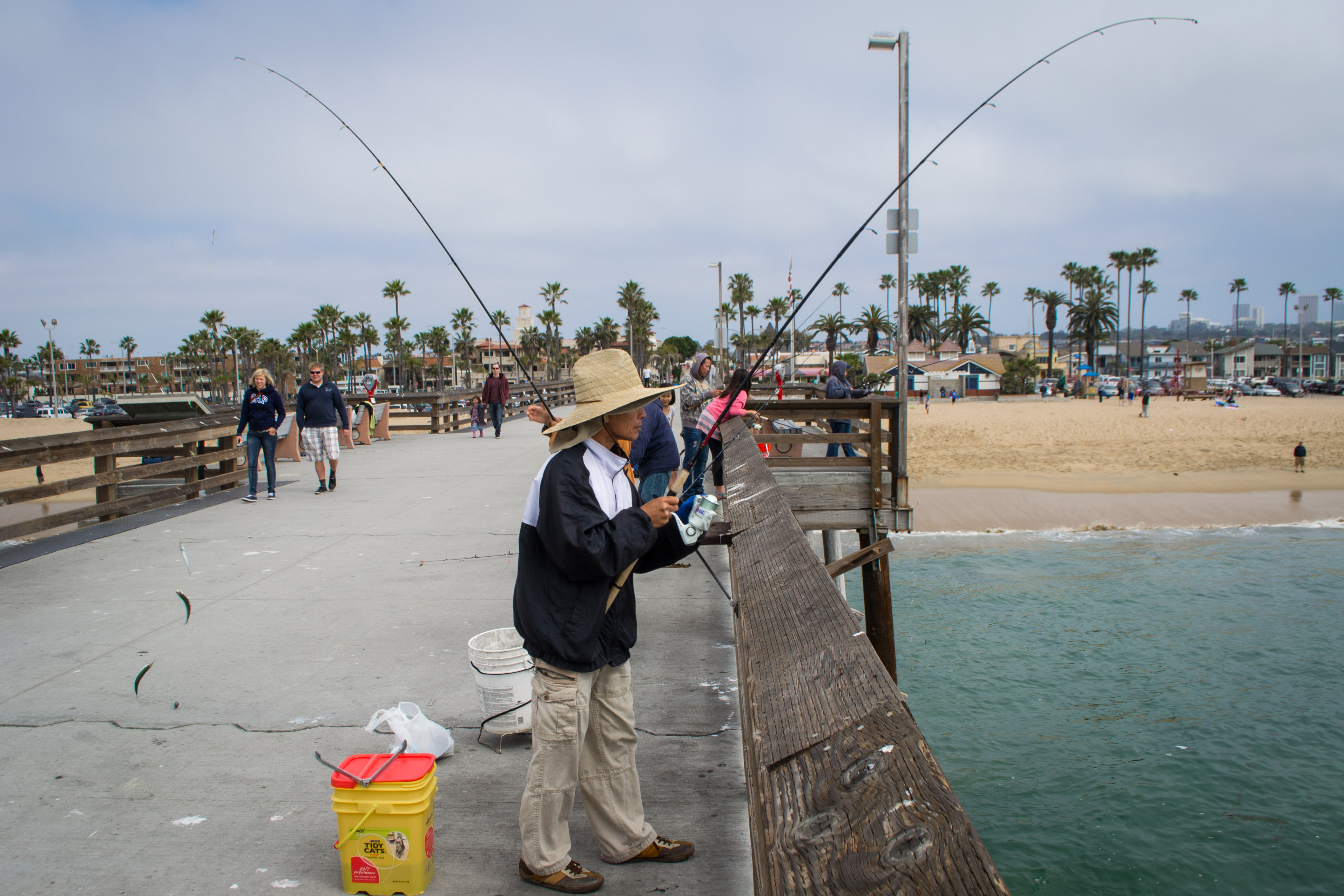 file mackerel fishing on balboa pier
