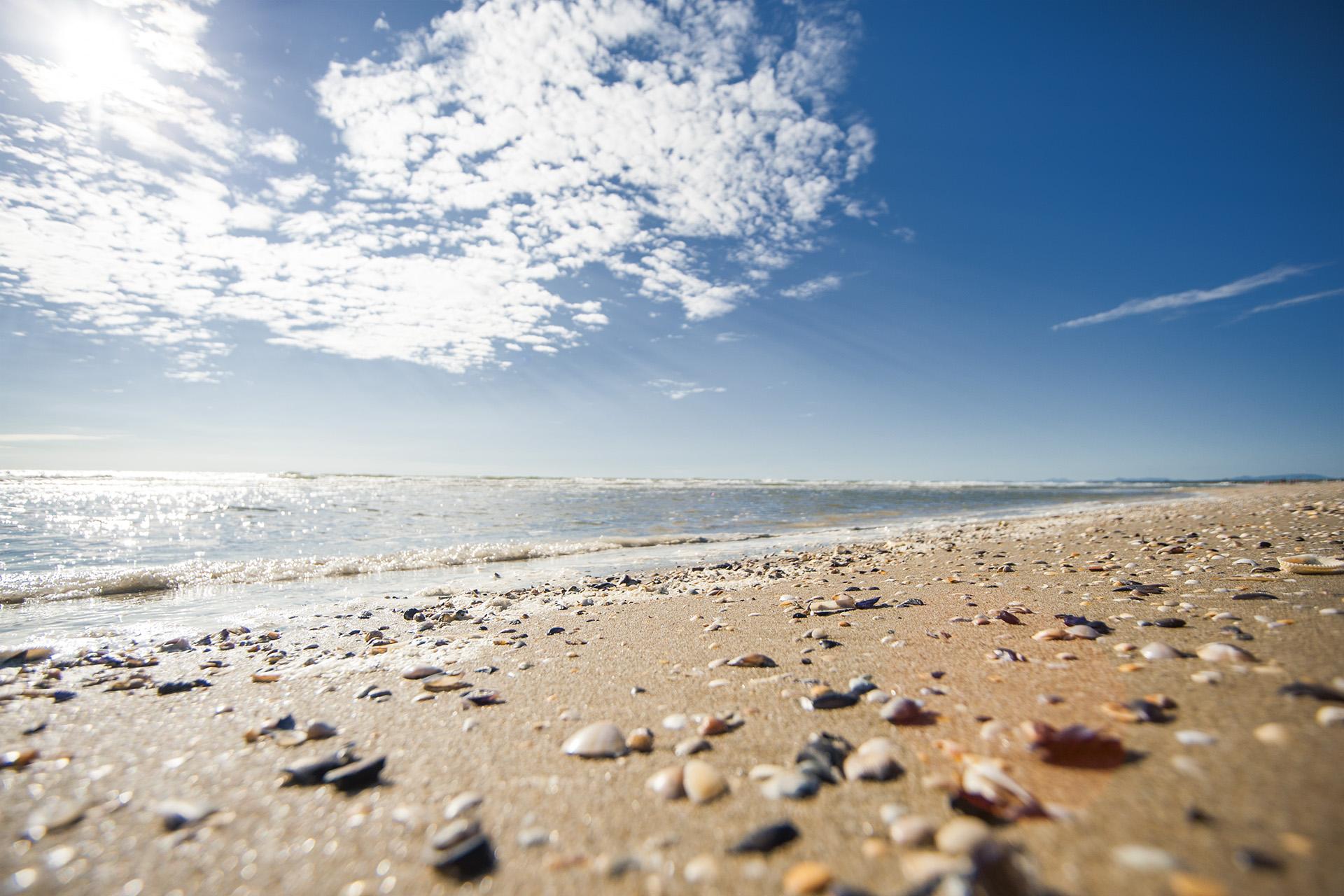Matrimonio Spiaggia Marina Di Ravenna : File marina di ravenna spiaggia g wikimedia commons