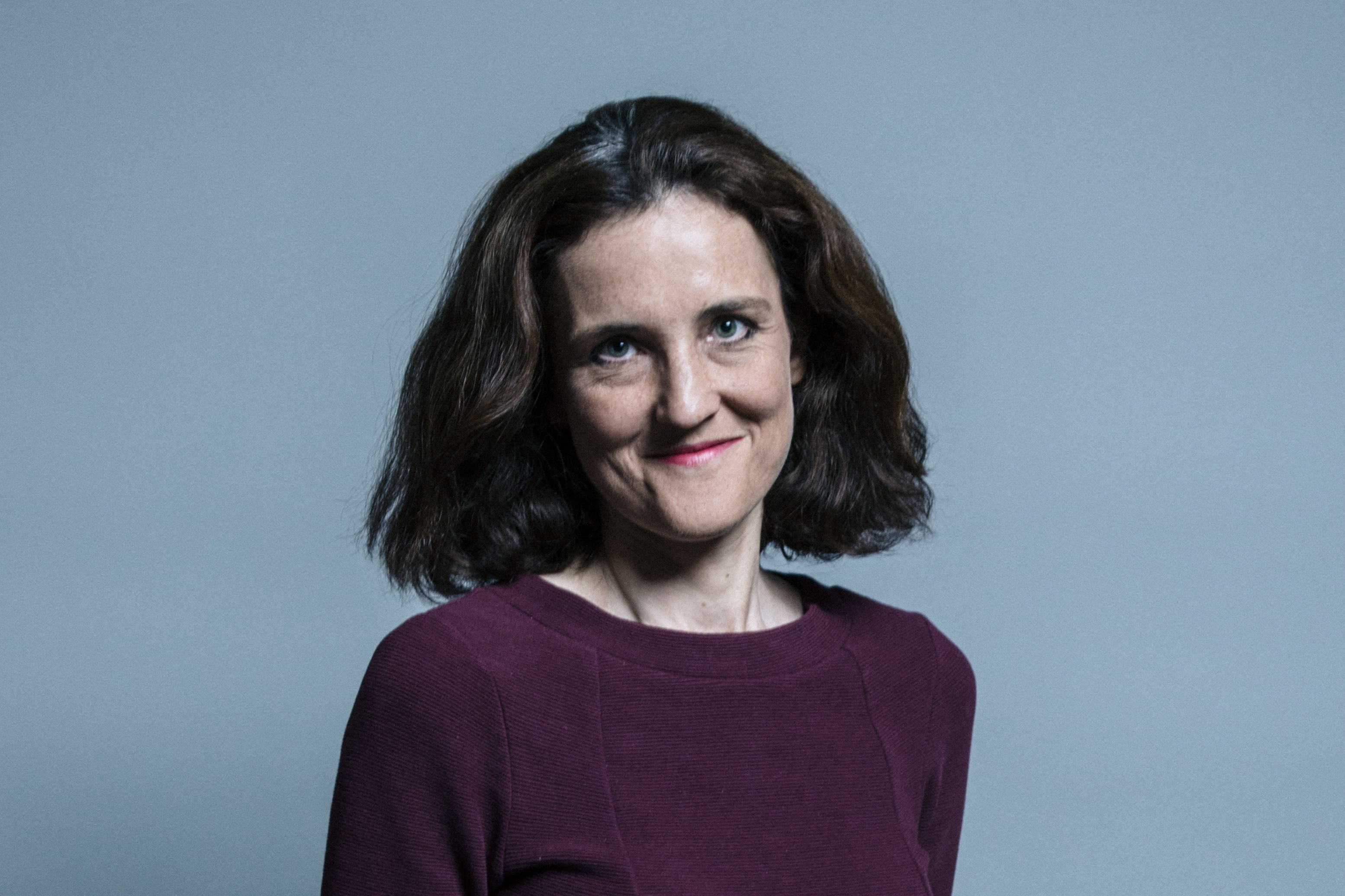 Image result for theresa villiers portrait