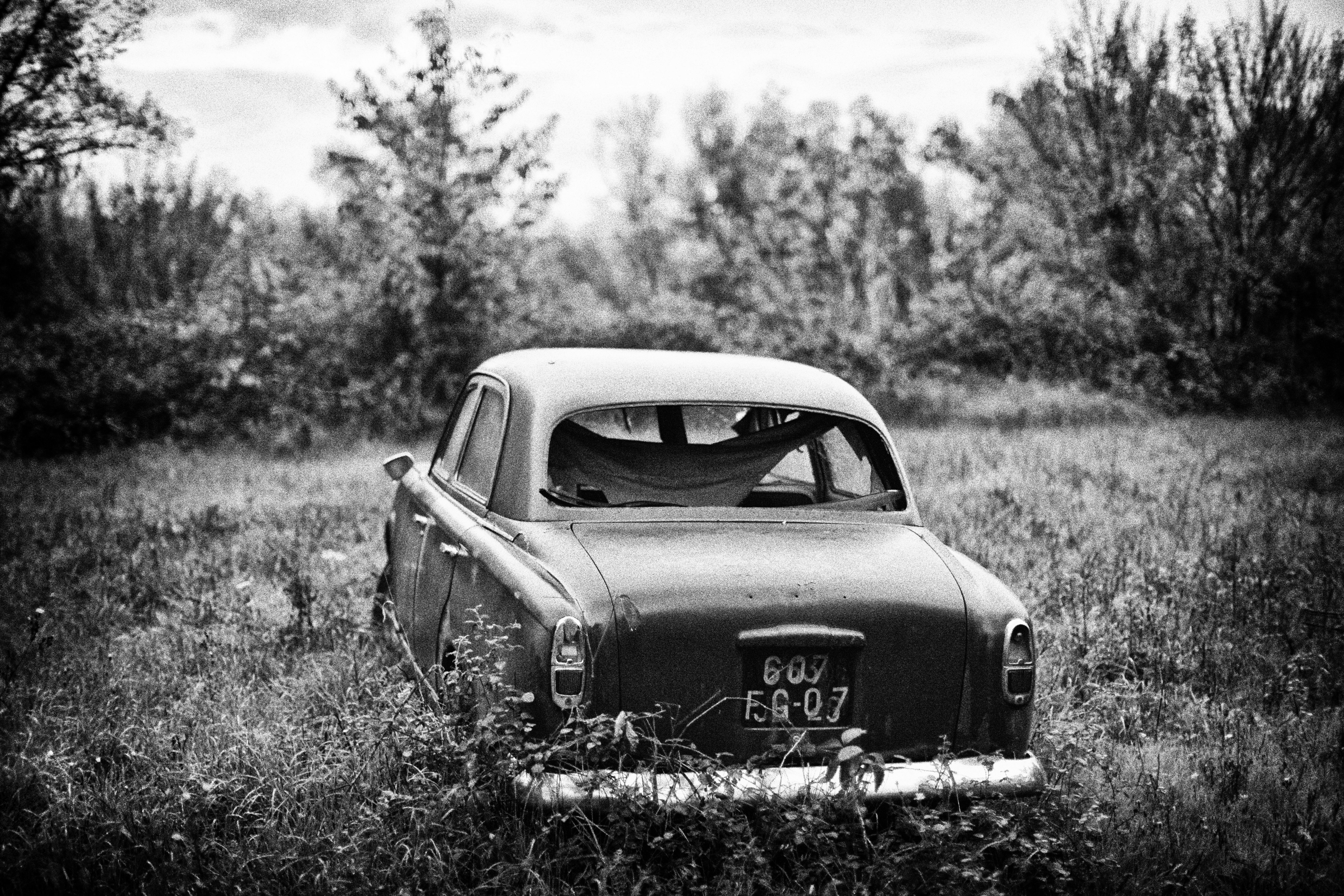 file peugeot 203 black and white picture jpg wikimedia commons
