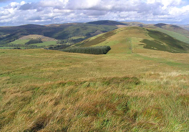 File:Rough grazing on Henbrae Hill - geograph.org.uk - 563268.jpg