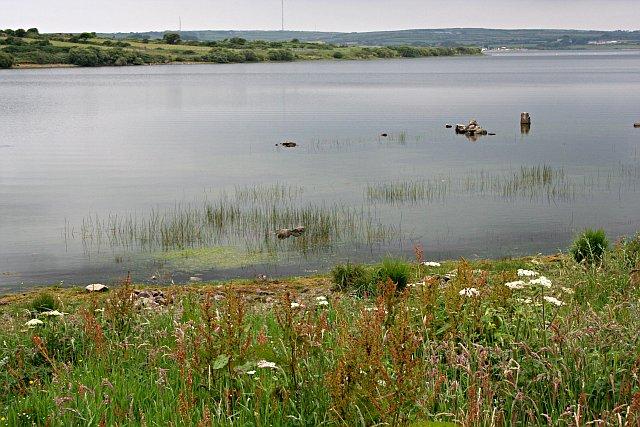 Stithians Lake - geograph.org.uk - 194885