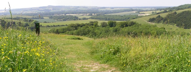 View of the Meon Valley from Old Winchester Hill - geograph.org.uk - 188125