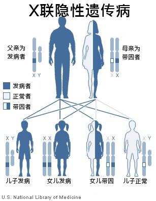 Xxxxy Syndrome