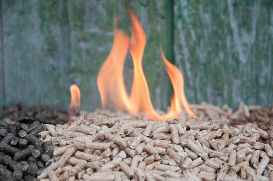 American Heritage Biomass