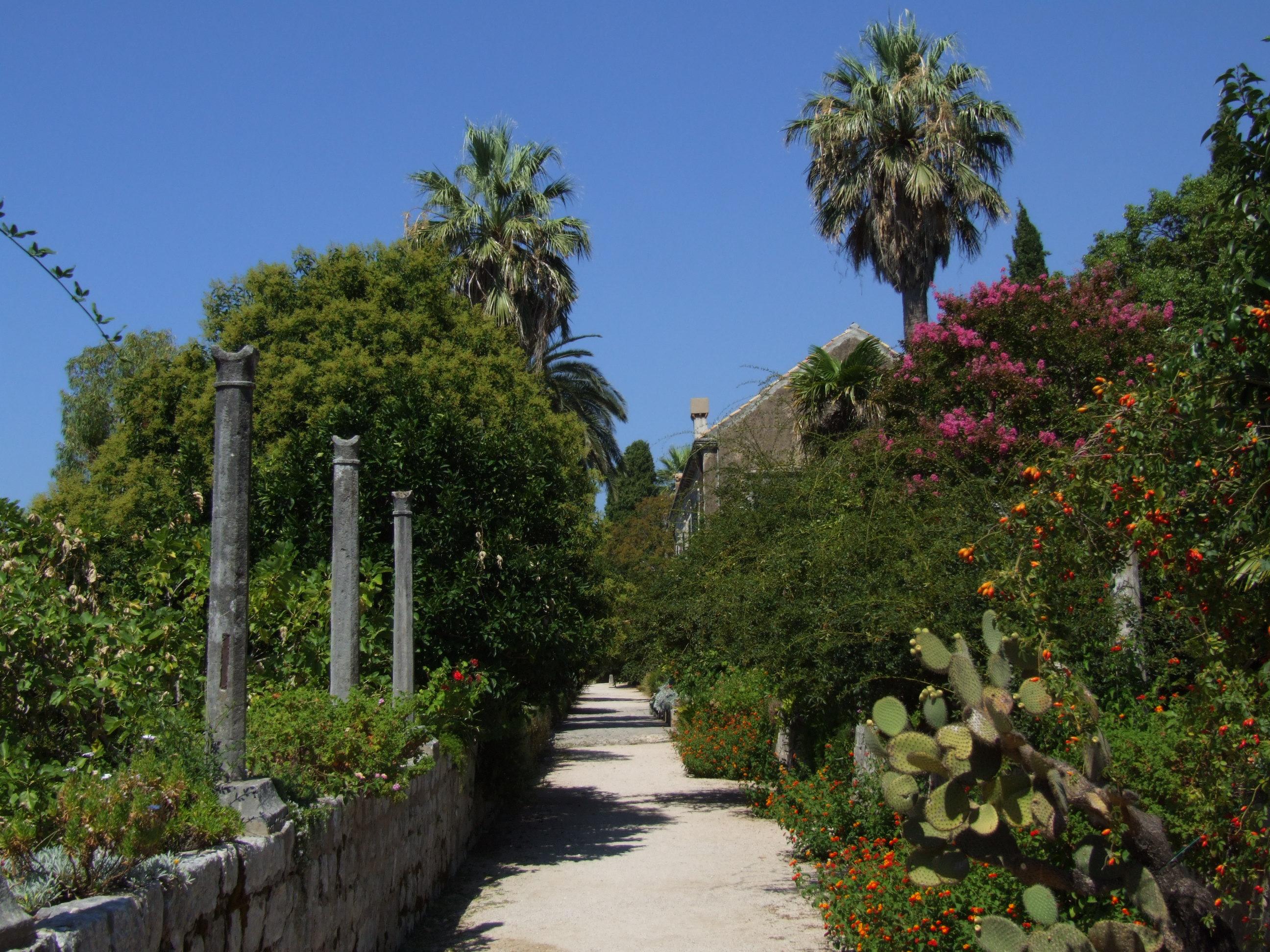 Arboretum Trsteno Wikipedija