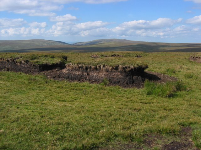 Cut Hill - geograph.org.uk - 778081.jpg