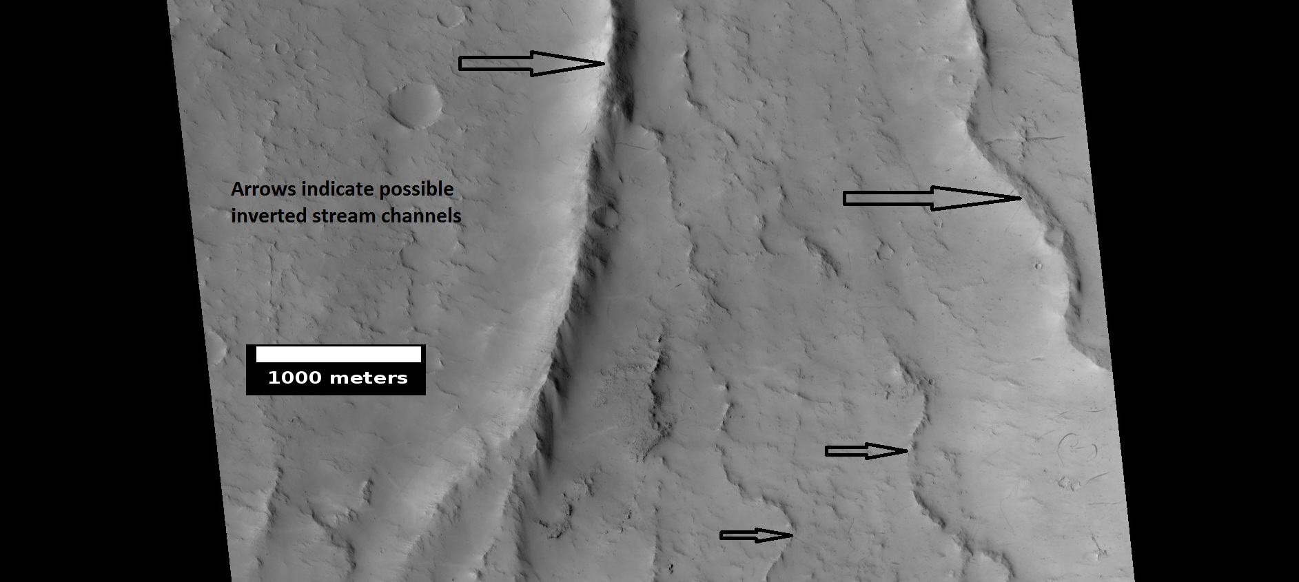 Possible inverted stream channels in Phlegra Dorsa region, as seen by HiRISE under HiWish program. The ridges were probably once stream valleys that have become full of sediment and cemented. So, they became hardened against erosion which removed surrounding material.