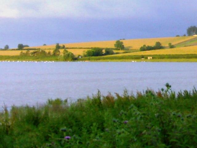 Early morning at Eyebrook Reservoir - geograph.org.uk - 488273