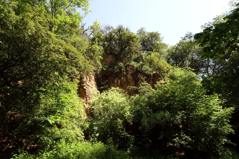 Startseite - Die Grnen Eichgraben