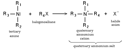 Alkylation of a tertiary amine