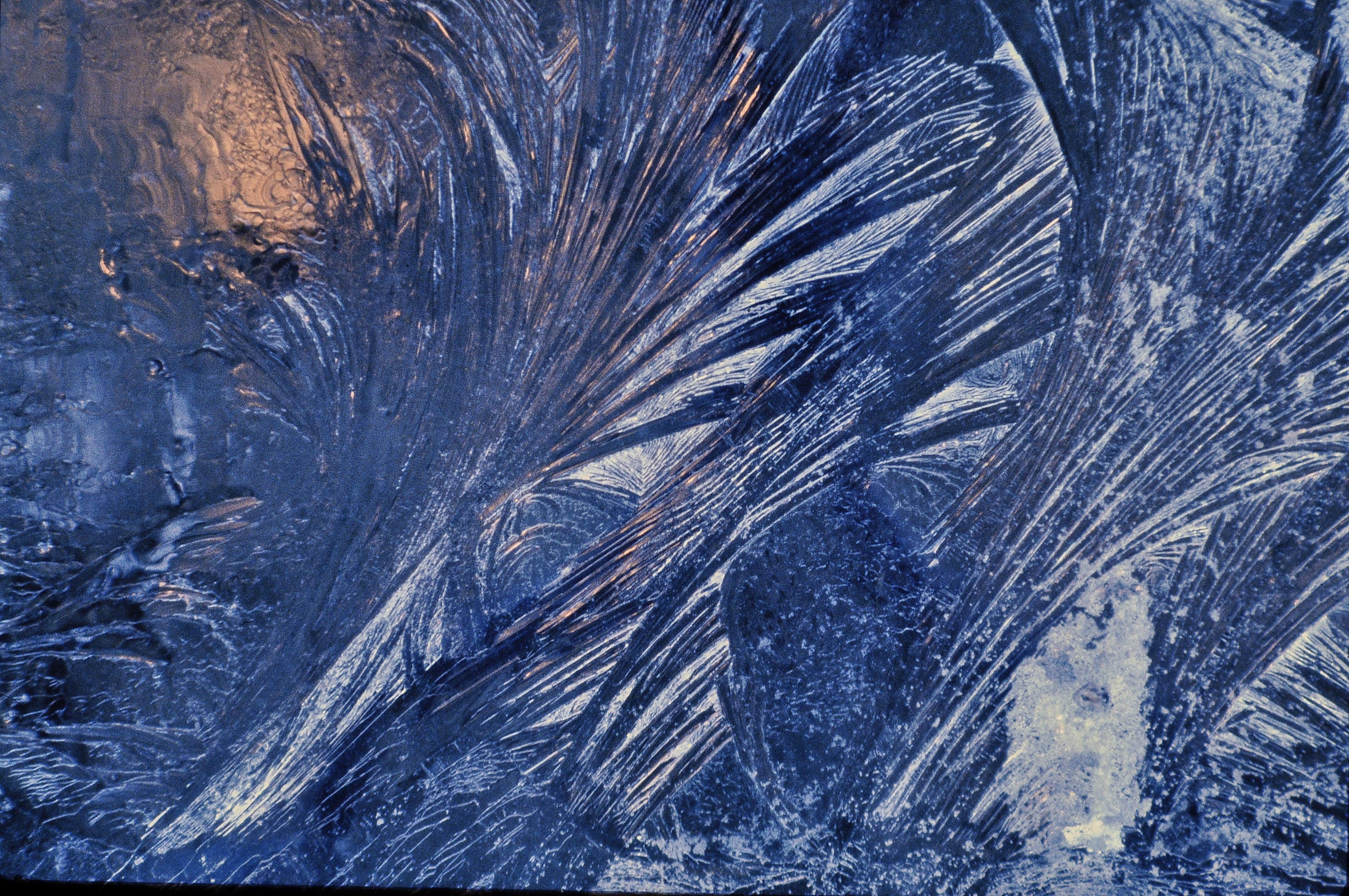 File:Frost patterns 5.jpg - Wikimedia Commons