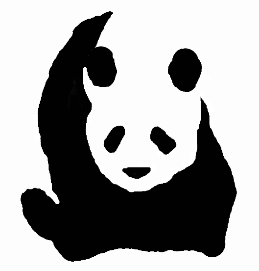 Giant panda drawing