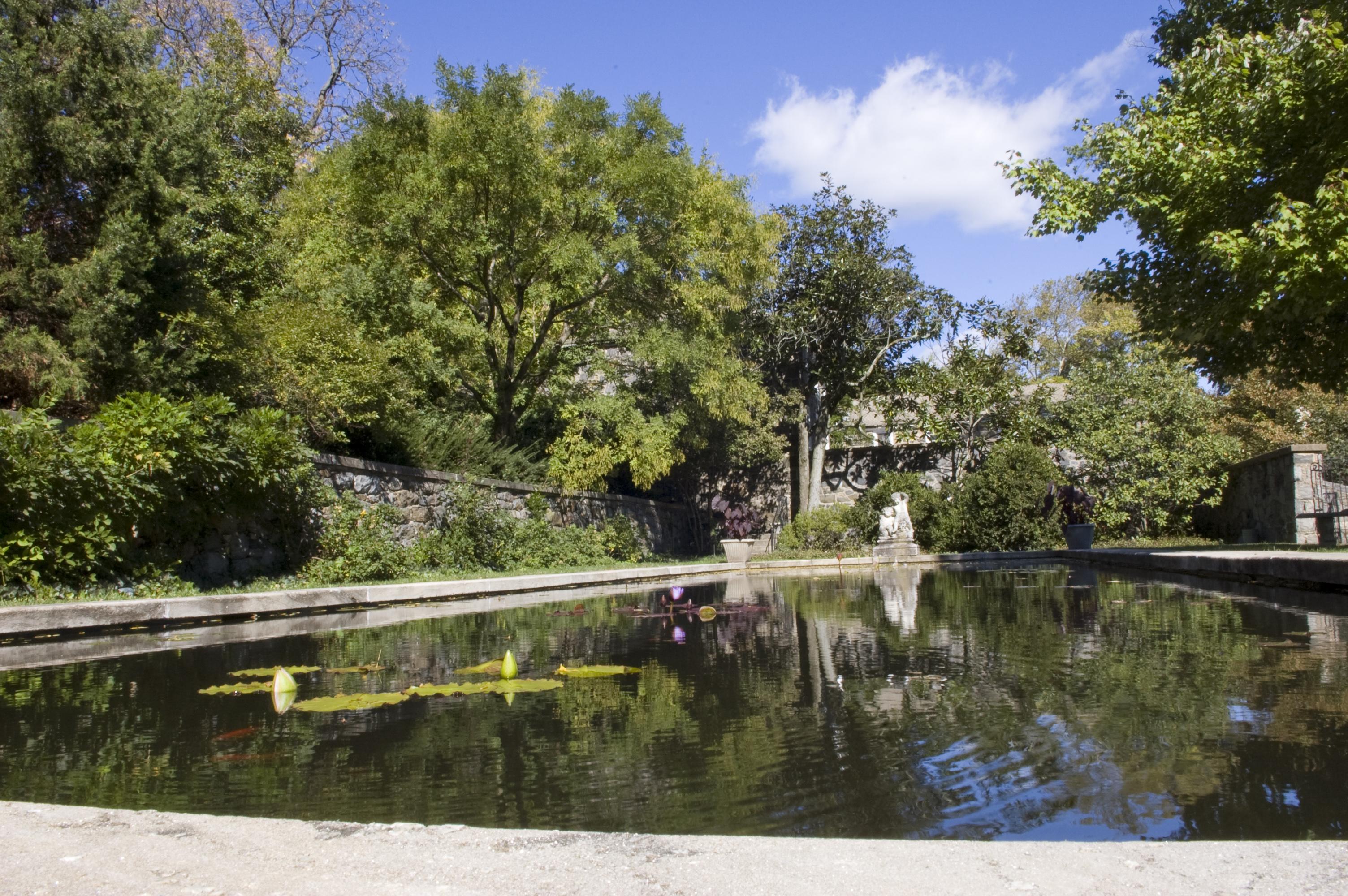 File gibraltar gardens reflecting wikimedia commons for Garden reflecting pool