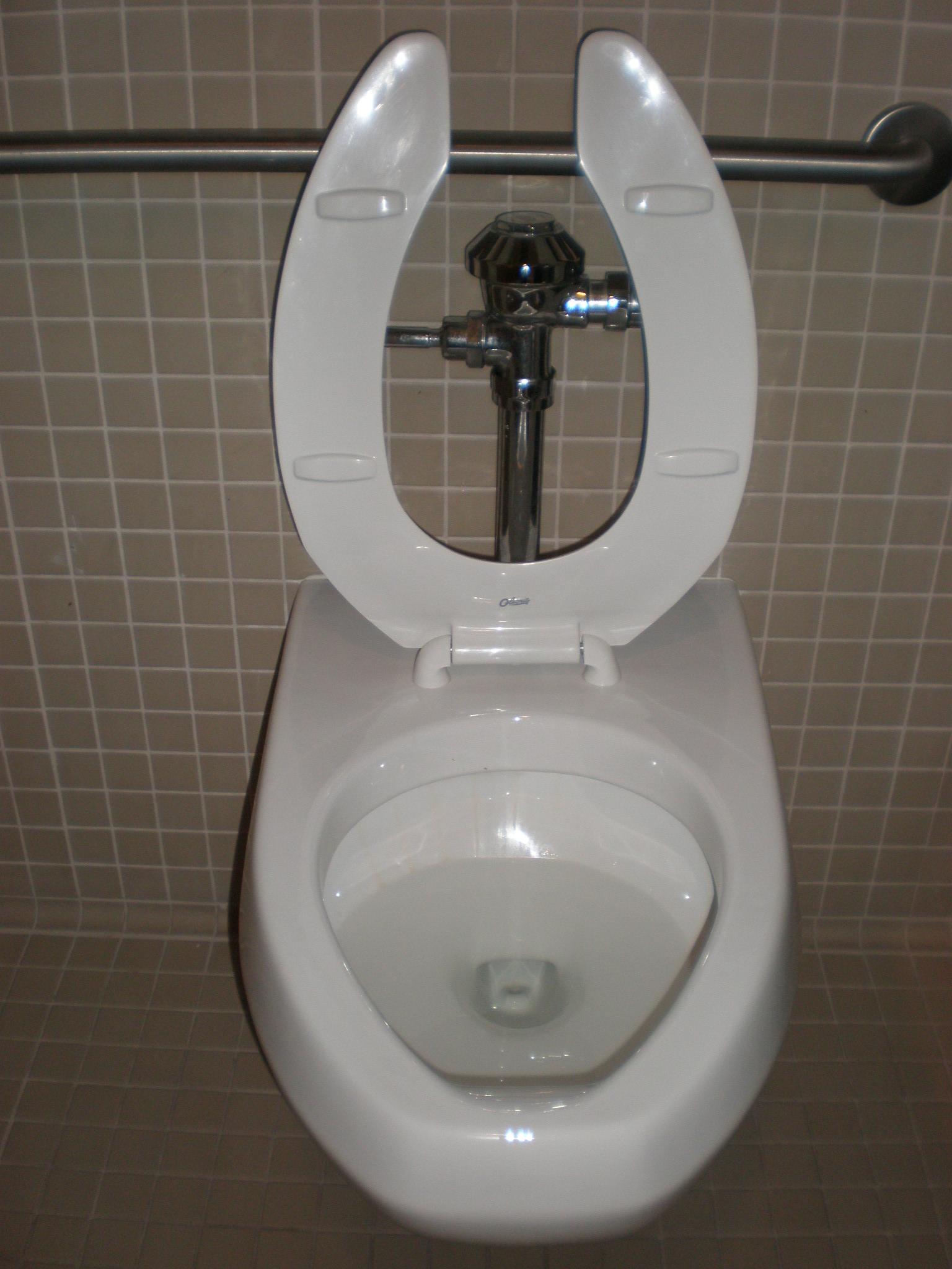File:Kohler toilet.JPG - Wikimedia Commons