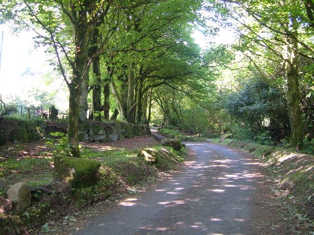 Lane to Scorhill - geograph.org.uk - 1702373