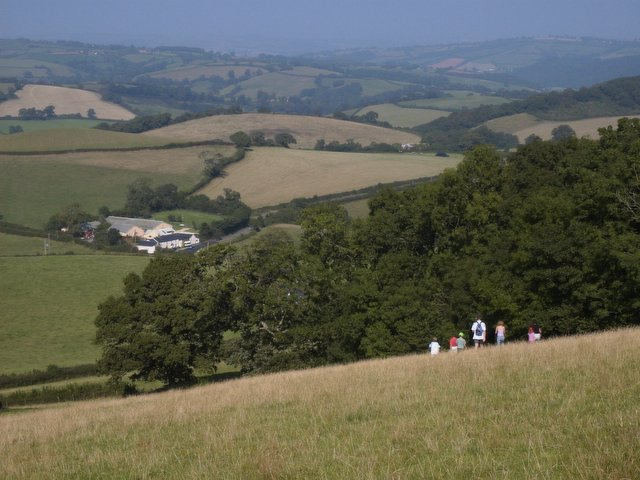 Looking NE from the northern slopes of Cadbury Castle - geograph.org.uk - 31195